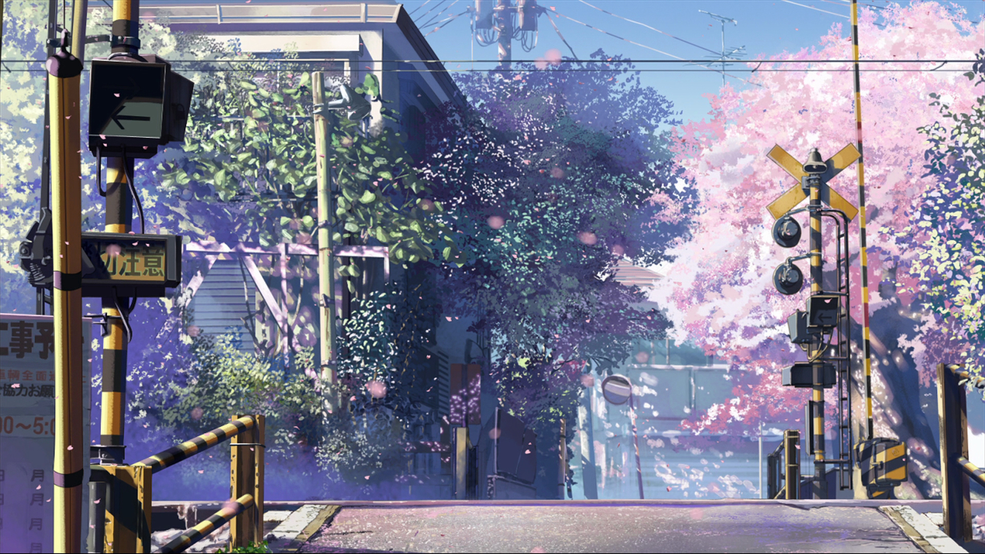 5.Centimeters.Per.Second.full.349172