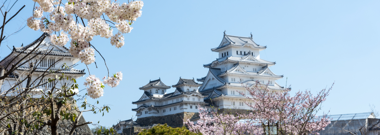 Japan Trip Spring 2016