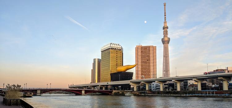 Japan 2020 #07: Tokyo